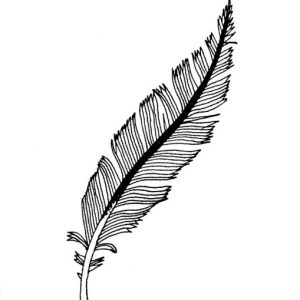 feather for Stijn Claessens